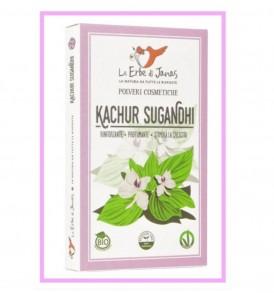 kachur sugandhi le erbe di janas